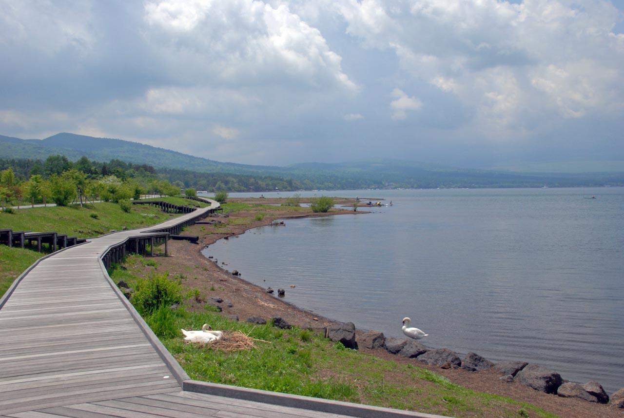 DSC_3321山中湖