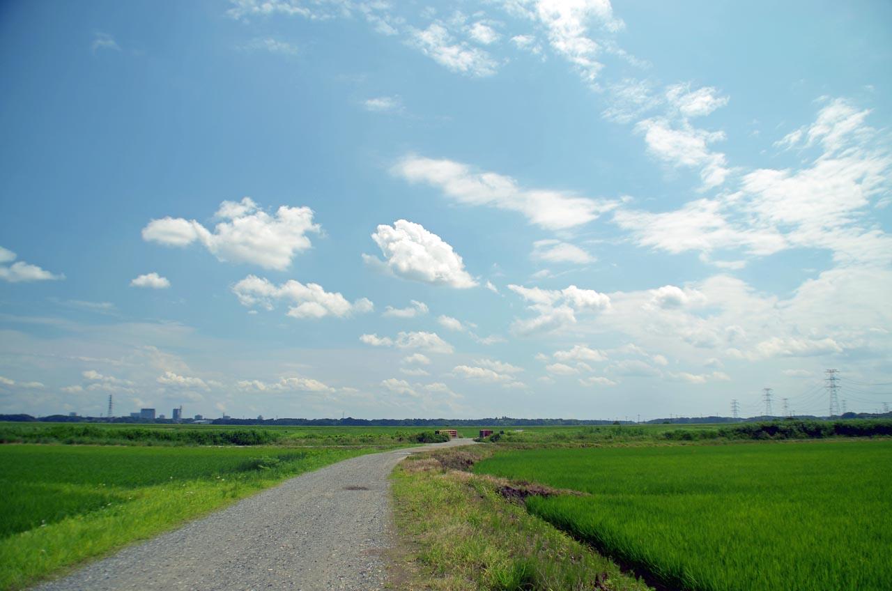 D70_3480風と空