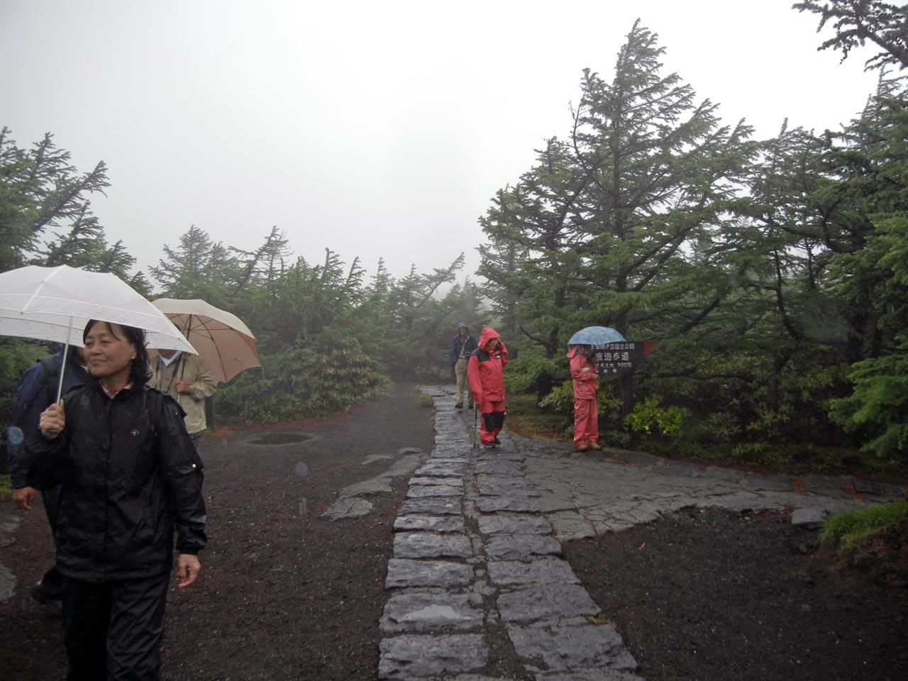 4)霧と霧雨の中の散策