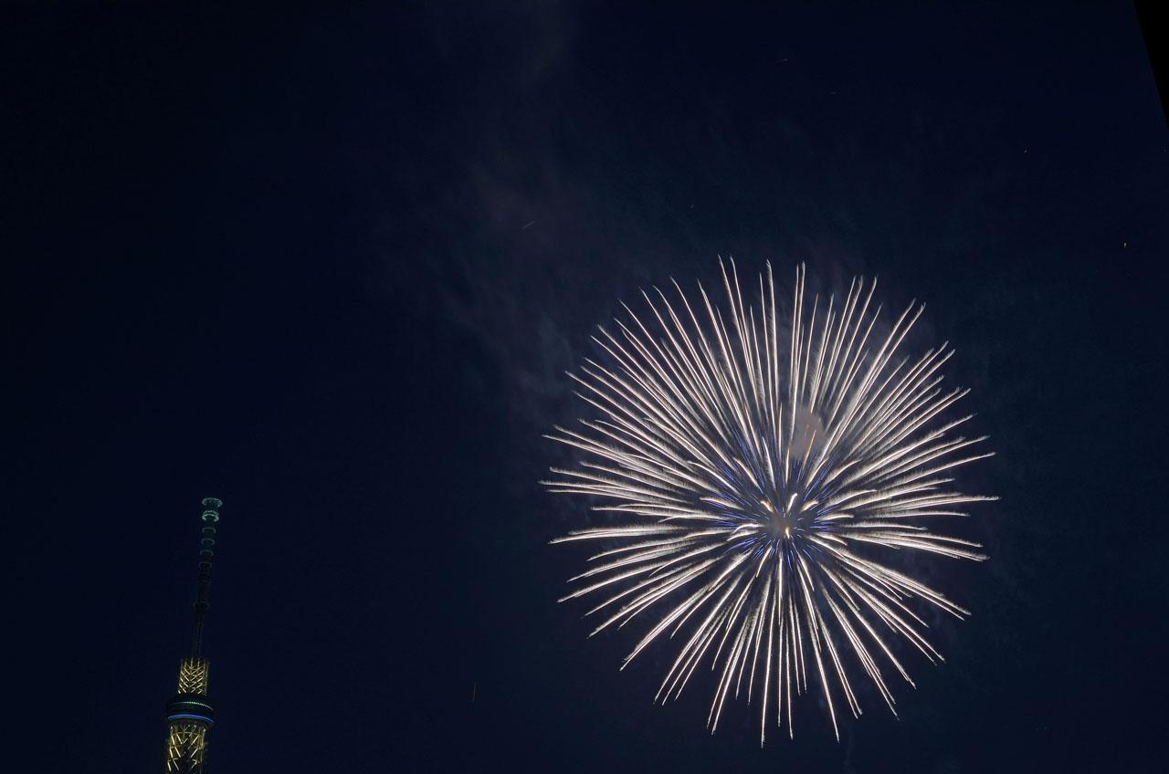D70_5373墨田の花火