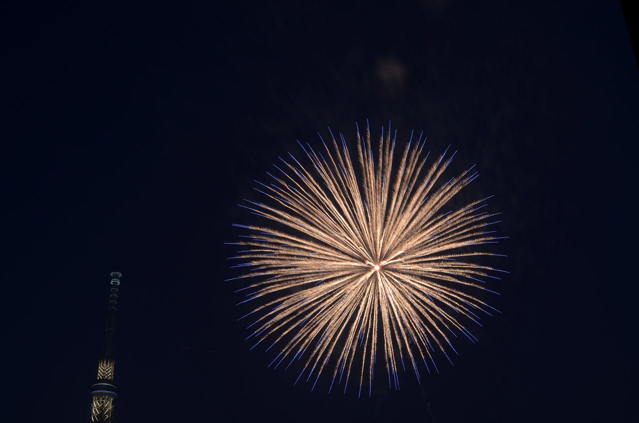 D70_5385墨田の花火