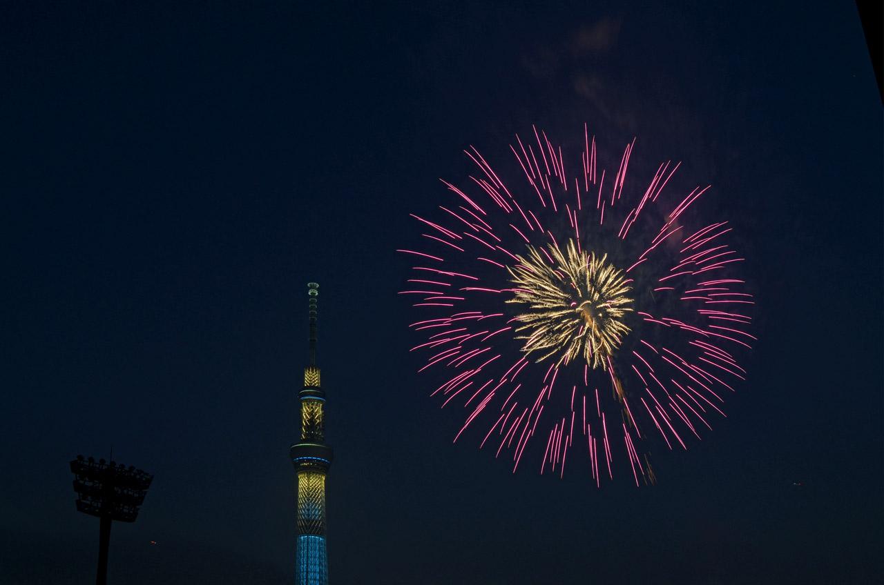 D70_5357墨田の花火