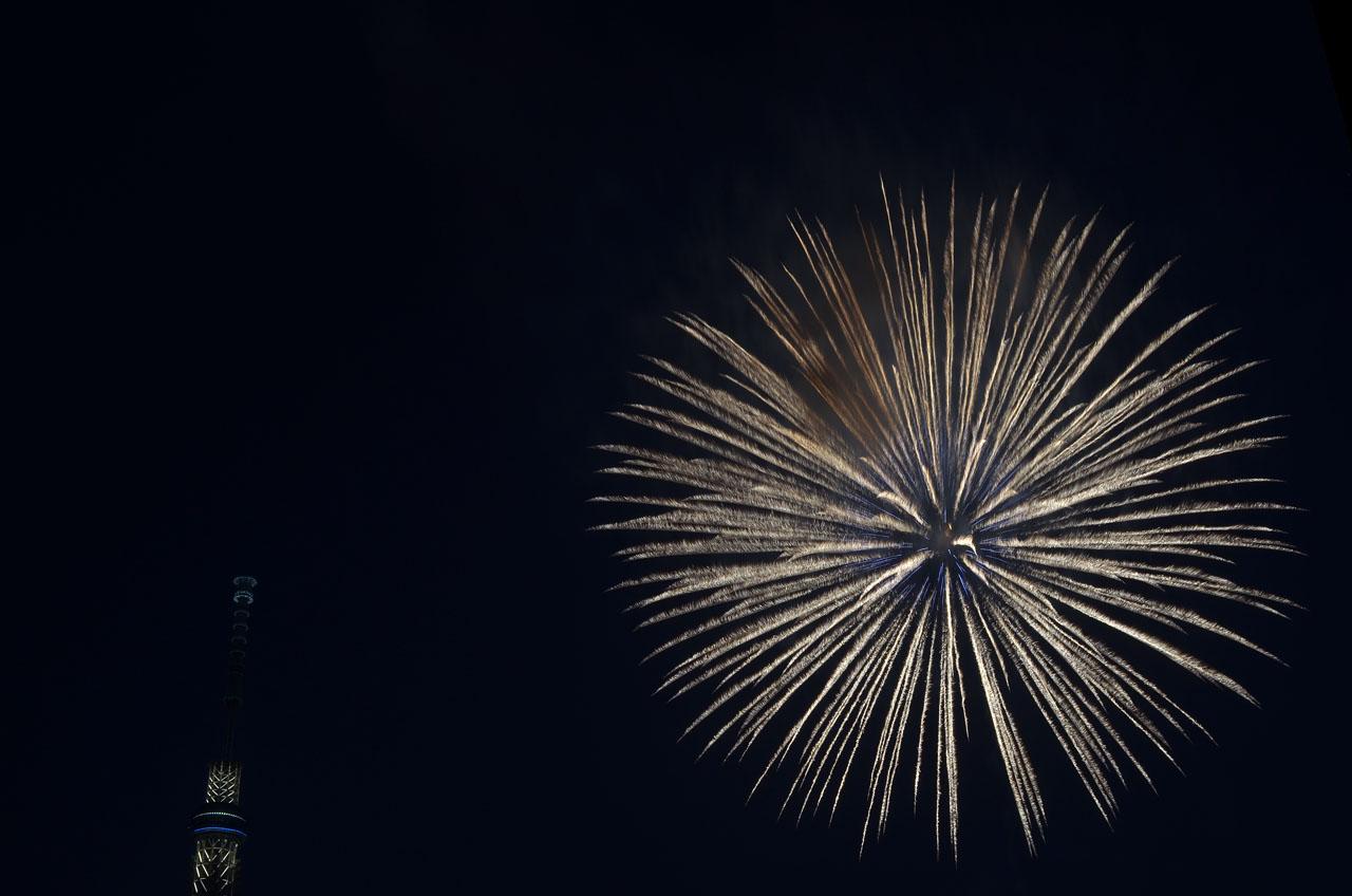 D70_5374墨田の花火