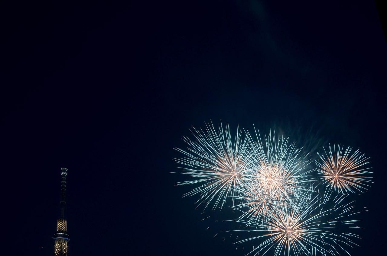 D70_5389墨田の花火