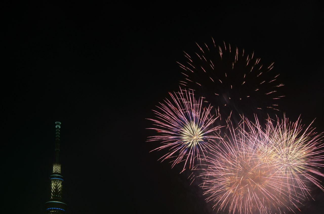 D70_5408墨田の花火