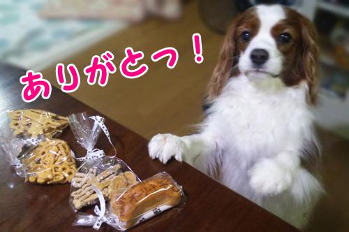 makomikanさんから14051