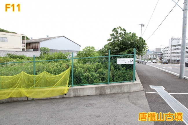 f_011.jpg