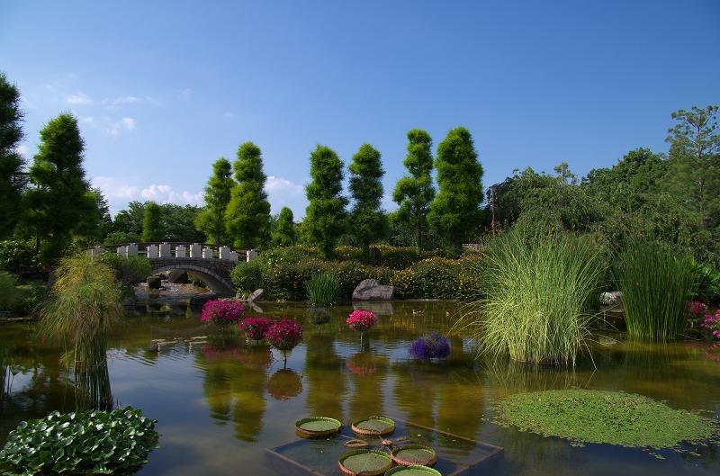草津市立 水生植物公園みずの森
