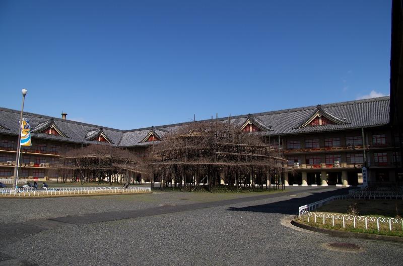 天理教本部 しだれ桜 2014