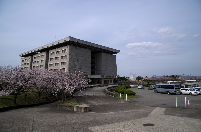 PL病院 桜