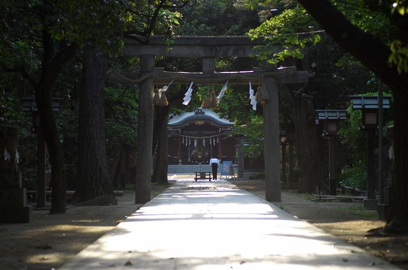 藤井寺 辛國神社