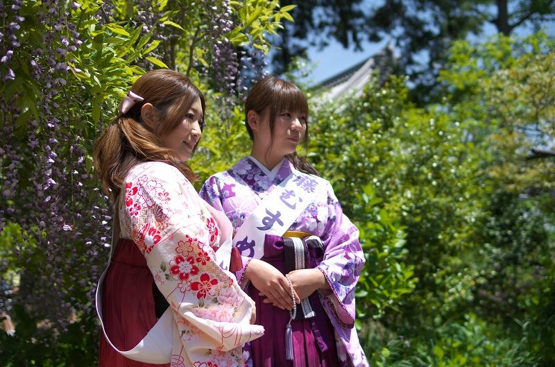 子安地蔵寺の藤むすめ撮影会