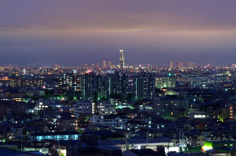 柏原市 観音寺 展望台 夜景
