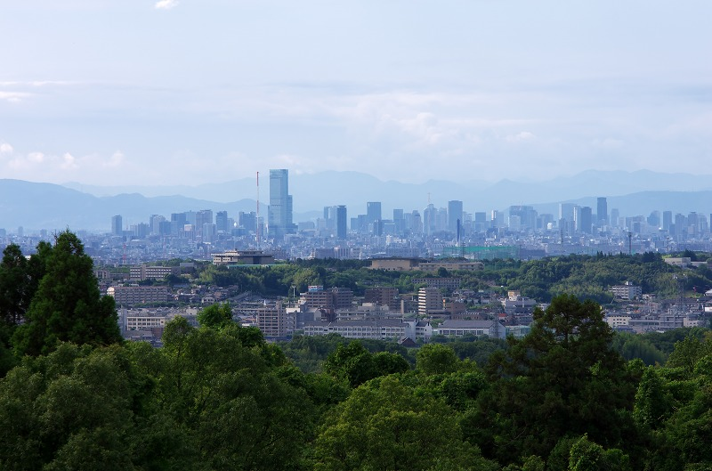 下赤阪の棚田