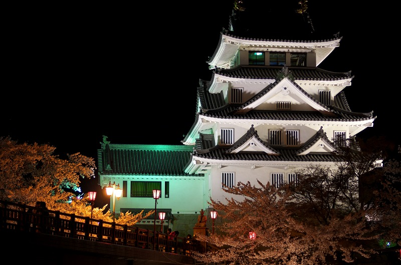 墨俣一夜城の夜桜ライトアップ
