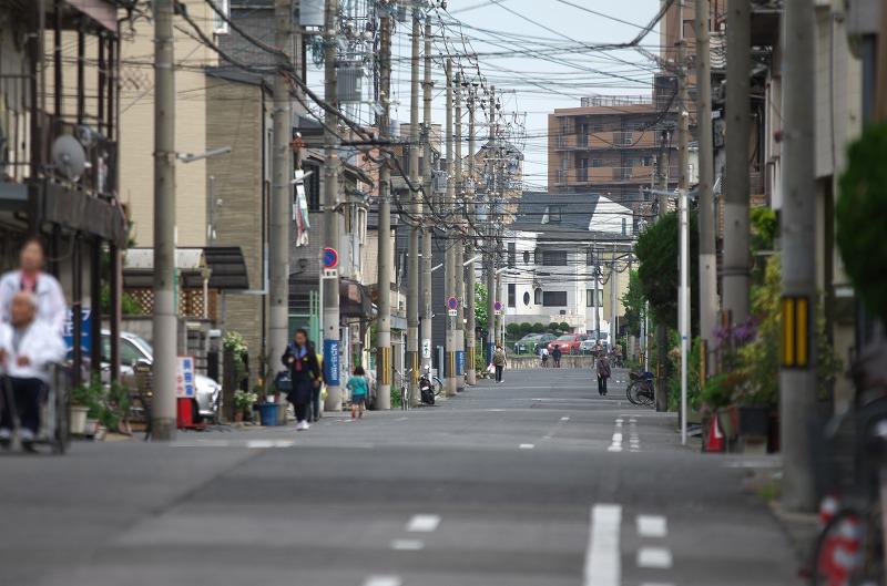 浅香山つつじまつり 2014