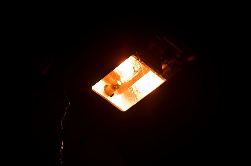 中津高架下 照明