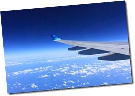 wing-221526_640