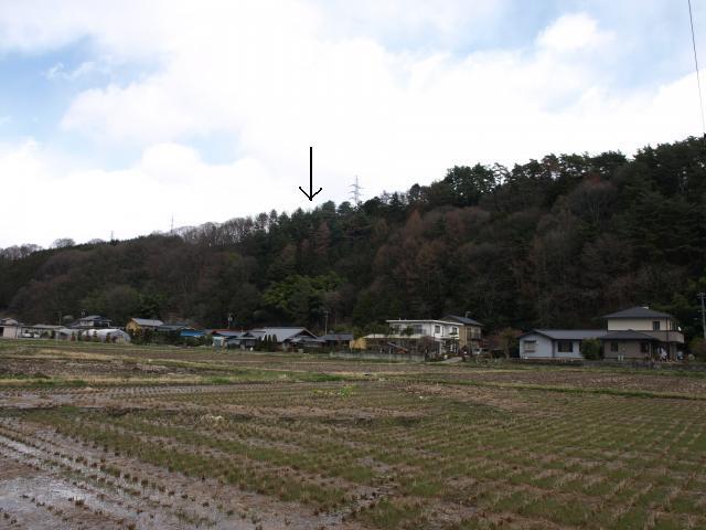 hoyasawa16 (4)