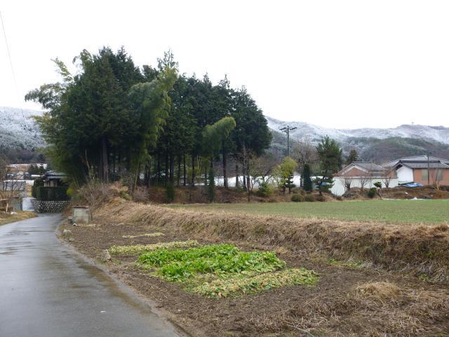 ichiyanozyoi1 (6)