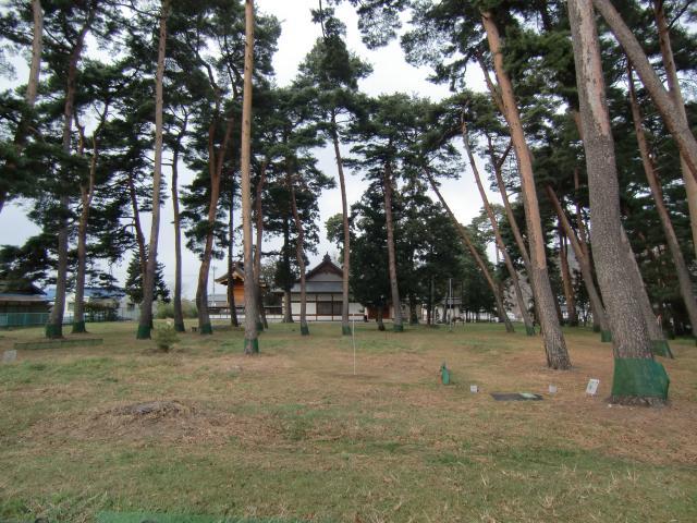 syouinnzi (2)