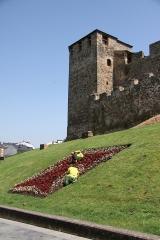 2314 Castillo de los Templarios