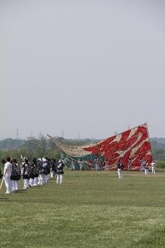 1406 相模の大凧まつり