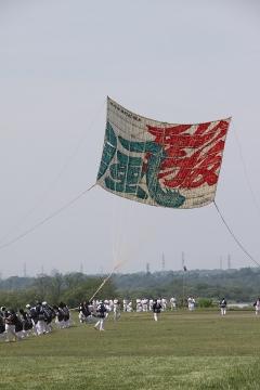 1410 相模の大凧まつり