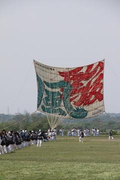 1409 相模の大凧まつり