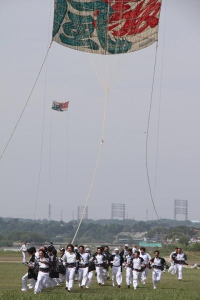 1420 相模の大凧まつり