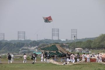 1428 相模の大凧まつり