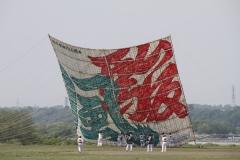 1537 相模の大凧まつり