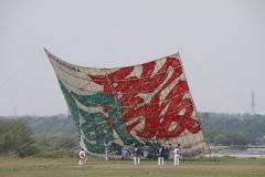 1536 相模の大凧まつり