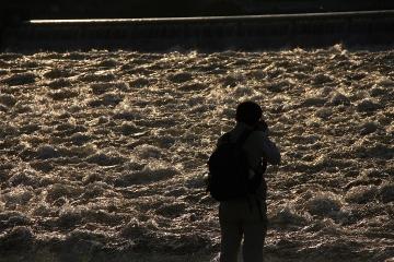1847 泳げ鯉のぼり相模川