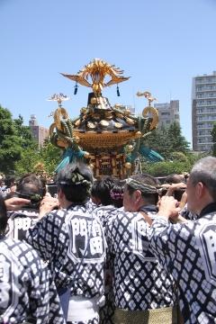 027 浅草 三社祭