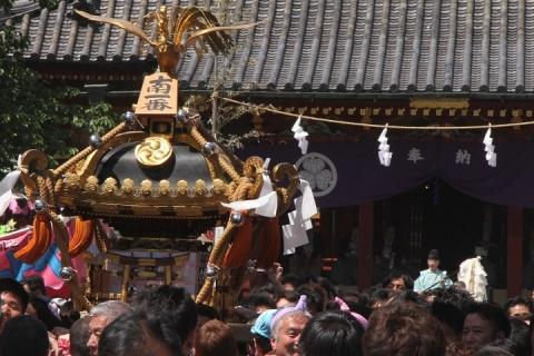 173 浅草 三社祭