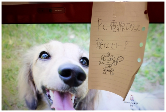 FC012883.jpg