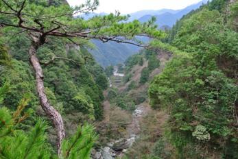 中津渓谷16展望台