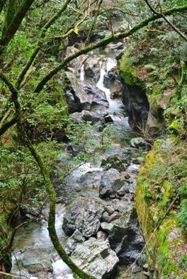 中津渓谷22二の滝