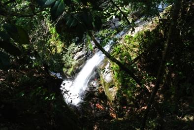 竜頭5雌滝上流