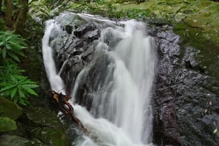 北九州27三の滝上流
