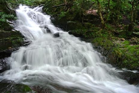 北九州31五の滝