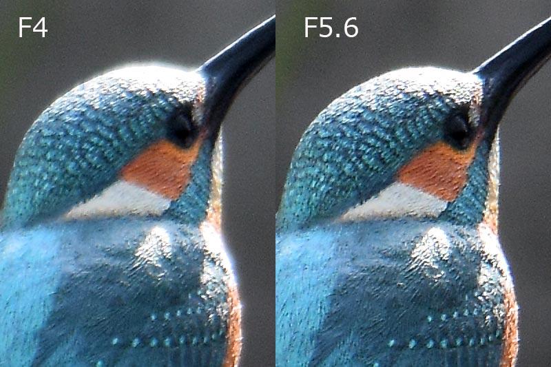 f456比較