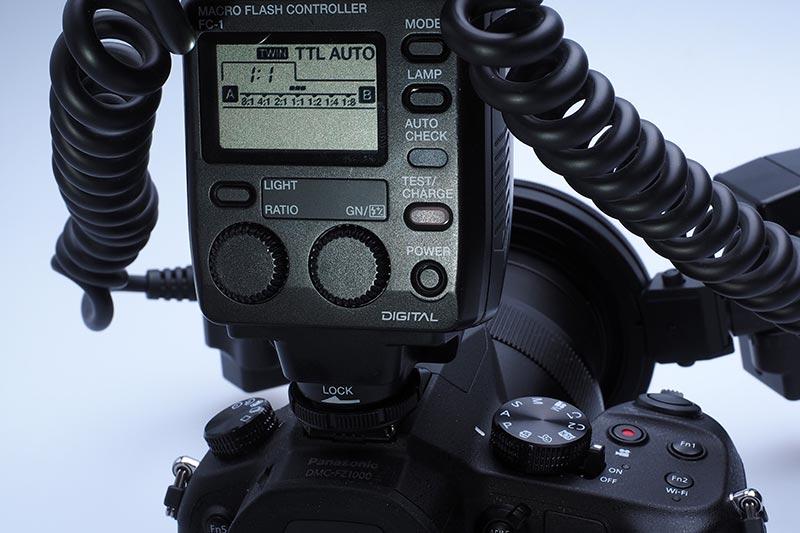 P8100014.jpg