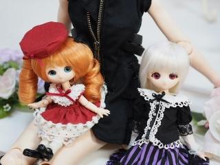 コッコちゃん11cmボディ、プチ姫ちゃん23cmボディ。