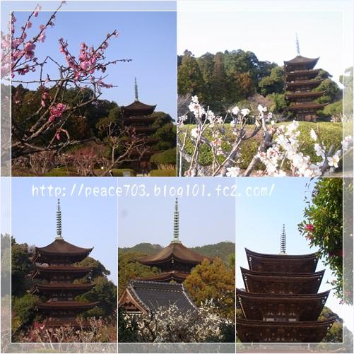 瑠璃光寺2
