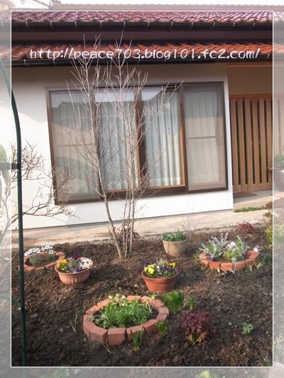 庭作り3R0010669