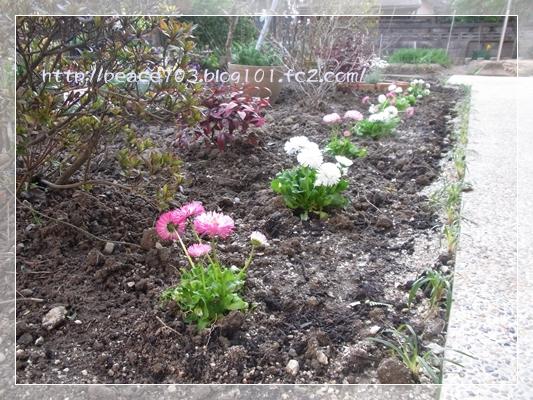 庭作り3R0010683