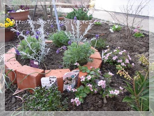 庭作り3R0010684