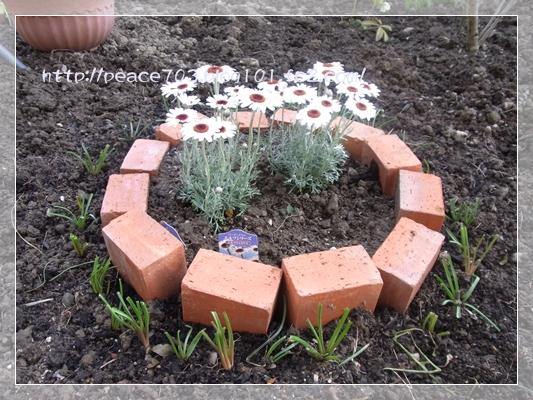 庭作り3R0010686